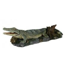 Kerámia | Trixie - 8716 | Krokodil