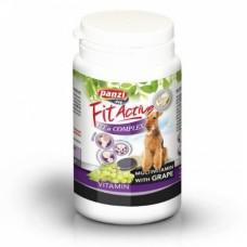 Panzi Fitactive | Fit a Complex Vitamin | 60 db